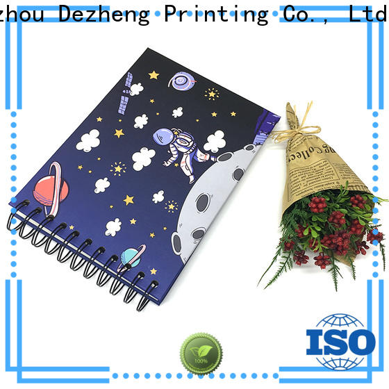 Dezheng Latest picture scrapbook factory for festival